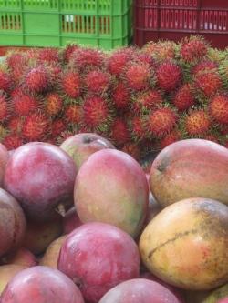 rambutans and mangos