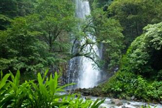 Los Chorros 1st waterfall
